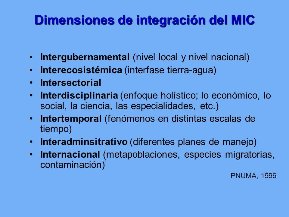 Dimensiones de integración del MIC