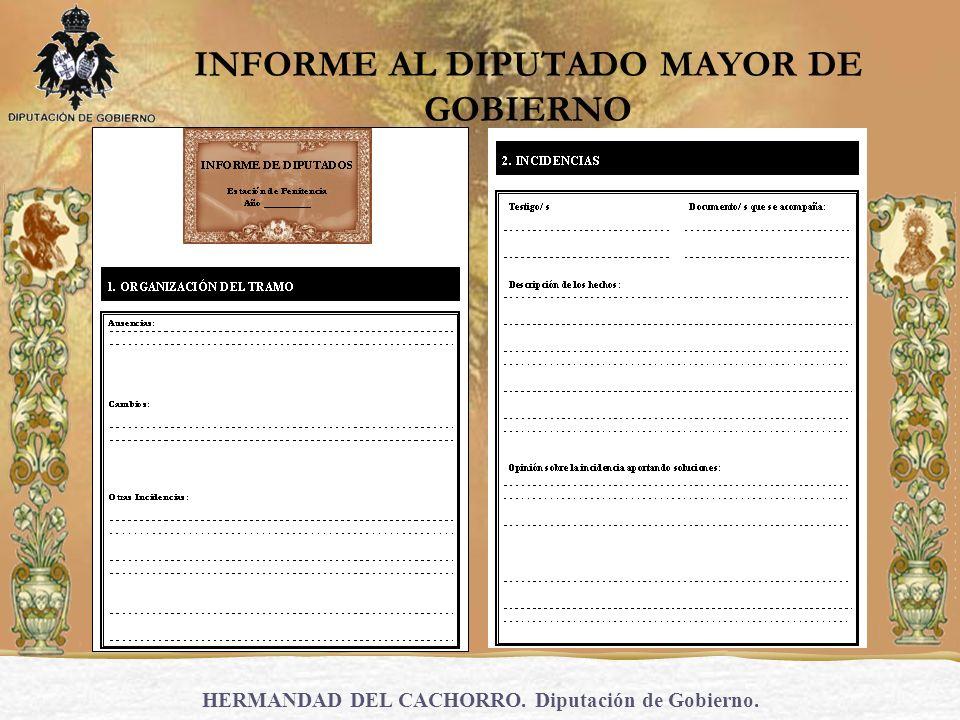 INFORME AL DIPUTADO MAYOR DE GOBIERNO