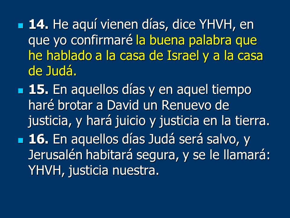 14. He aquí vienen días, dice YHVH, en que yo confirmaré la buena palabra que he hablado a la casa de Israel y a la casa de Judá.