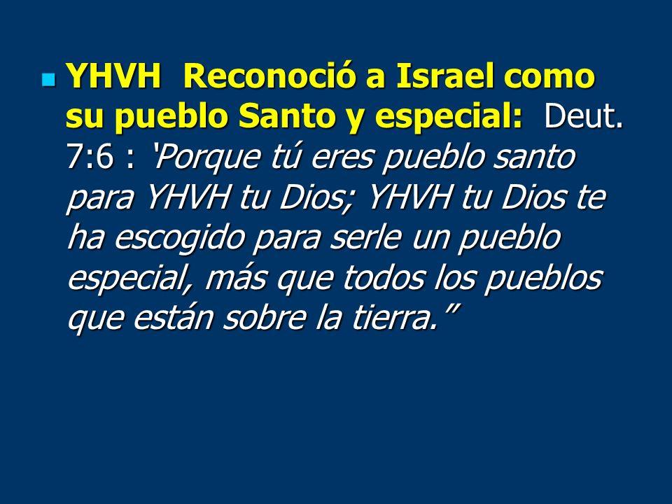 YHVH Reconoció a Israel como su pueblo Santo y especial: Deut