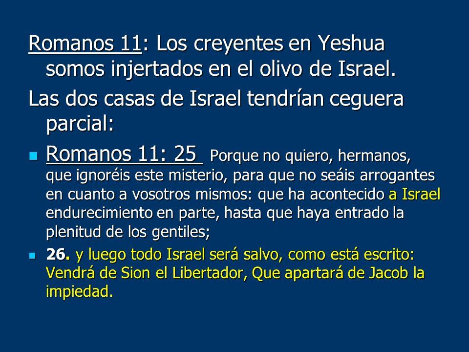 Las dos casas de Israel tendrían ceguera parcial: