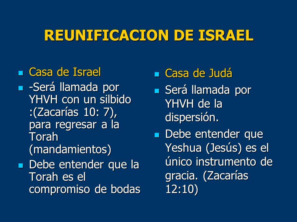 REUNIFICACION DE ISRAEL