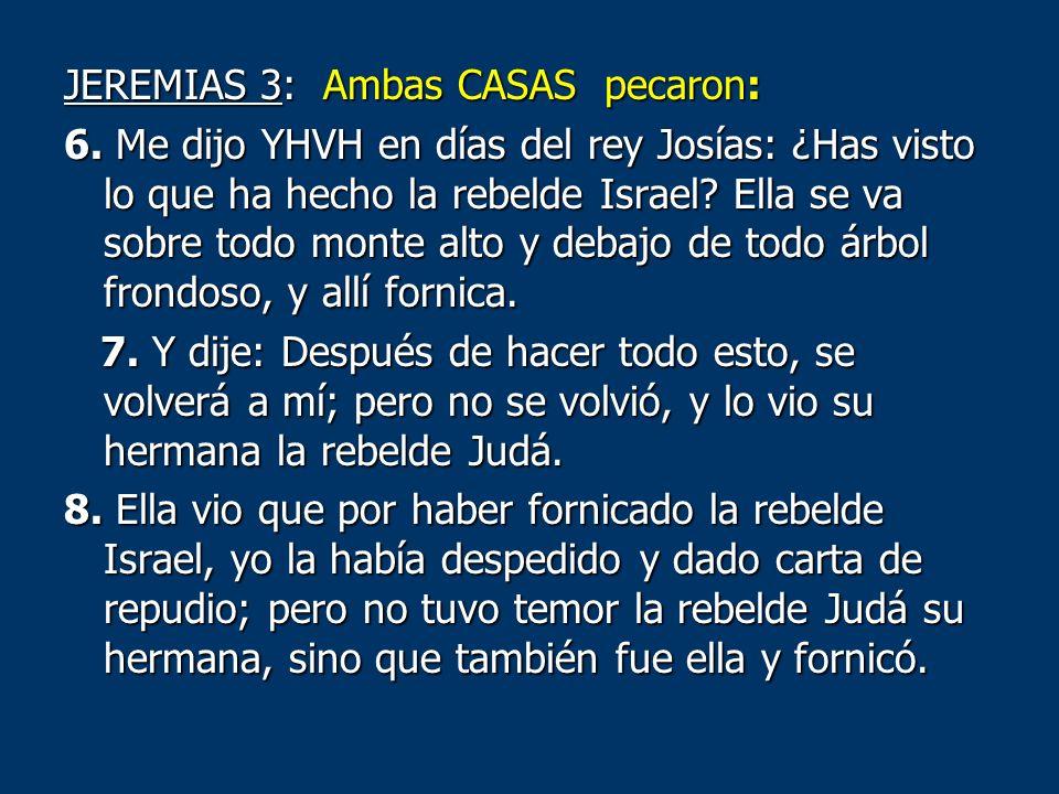 JEREMIAS 3: Ambas CASAS pecaron: 6