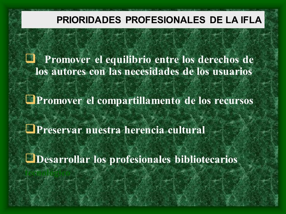 PRIORIDADES PROFESIONALES DE LA IFLA