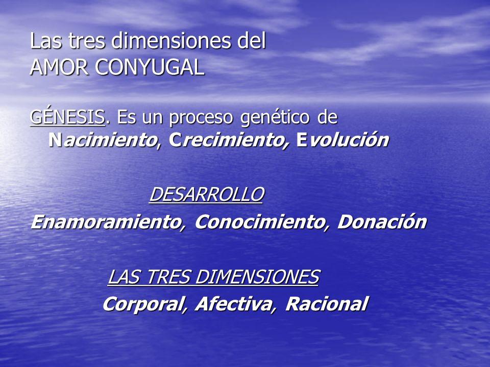 Las tres dimensiones del AMOR CONYUGAL