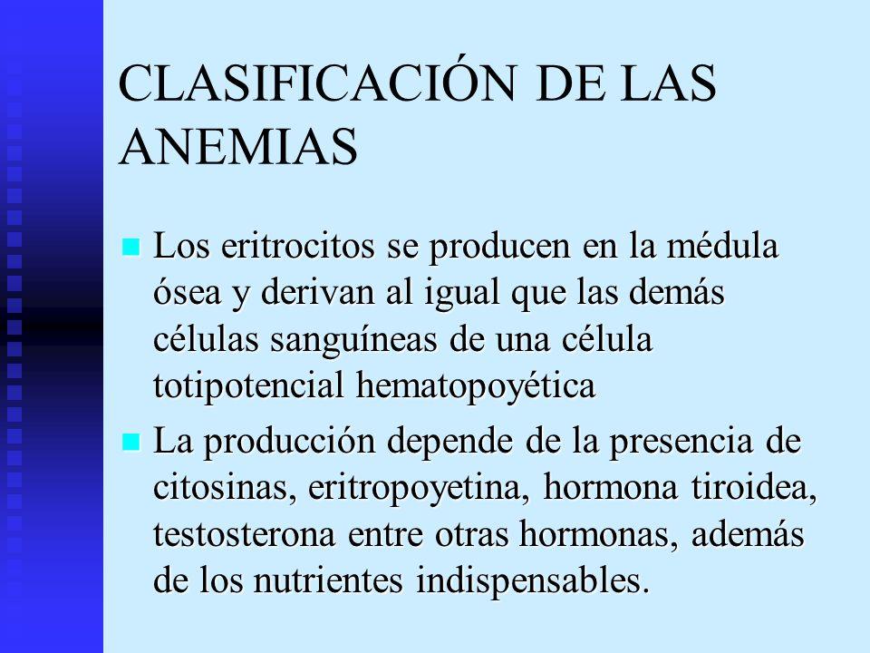 CLASIFICACIÓN DE LAS ANEMIAS