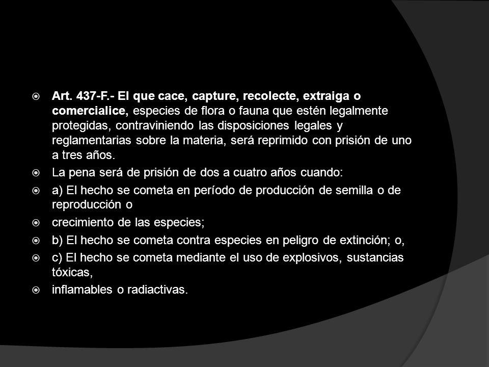 Art. 437-F.- El que cace, capture, recolecte, extraiga o comercialice, especies de flora o fauna que estén legalmente protegidas, contraviniendo las disposiciones legales y reglamentarias sobre la materia, será reprimido con prisión de uno a tres años.