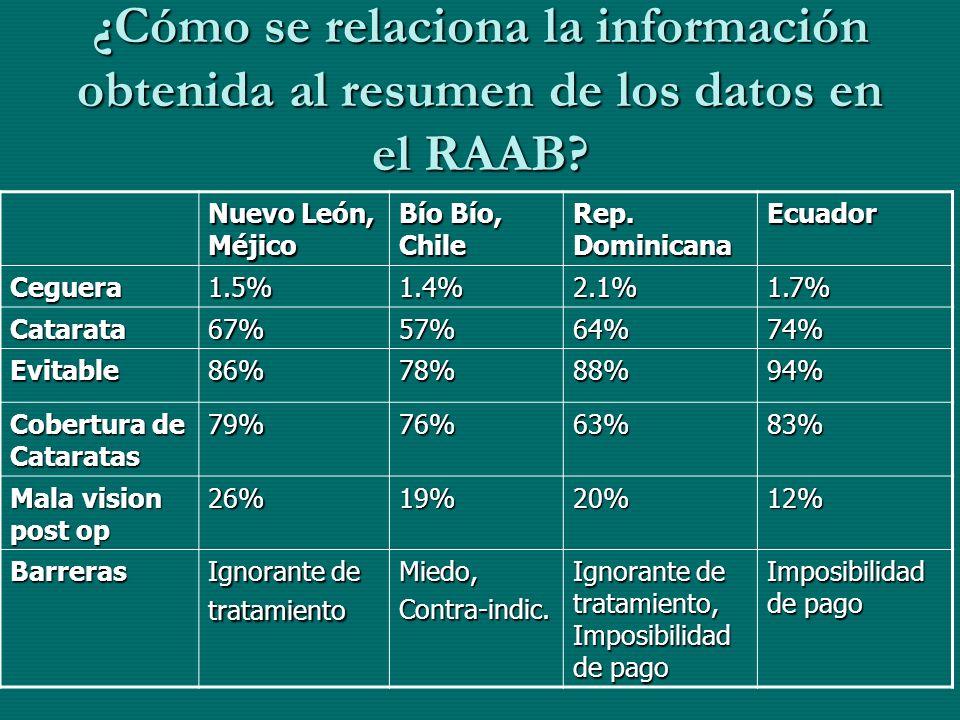 ¿Cómo se relaciona la información obtenida al resumen de los datos en el RAAB