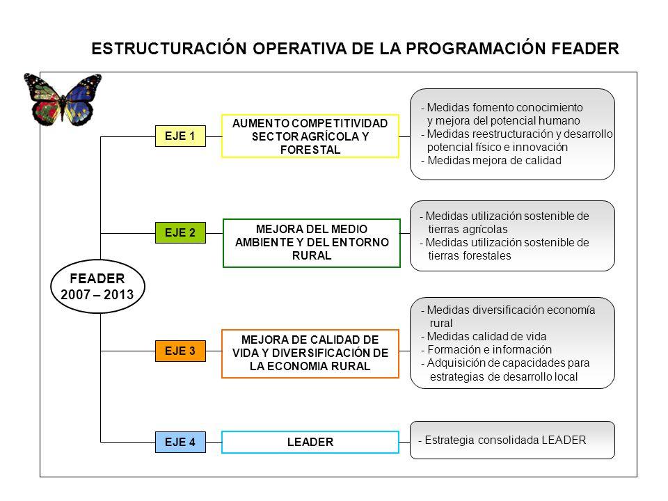 ESTRUCTURACIÓN OPERATIVA DE LA PROGRAMACIÓN FEADER