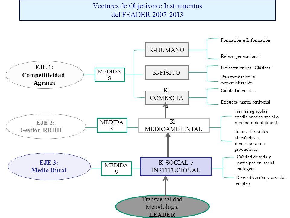 Vectores de Objetivos e Instrumentos del FEADER 2007-2013