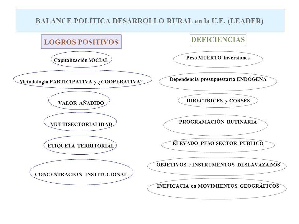 BALANCE POLÍTICA DESARROLLO RURAL en la U.E. (LEADER)