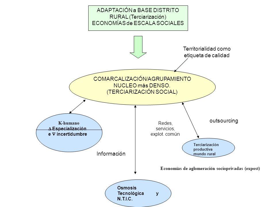 ADAPTACIÓN a BASE DISTRITO RURAL (Terciarización)
