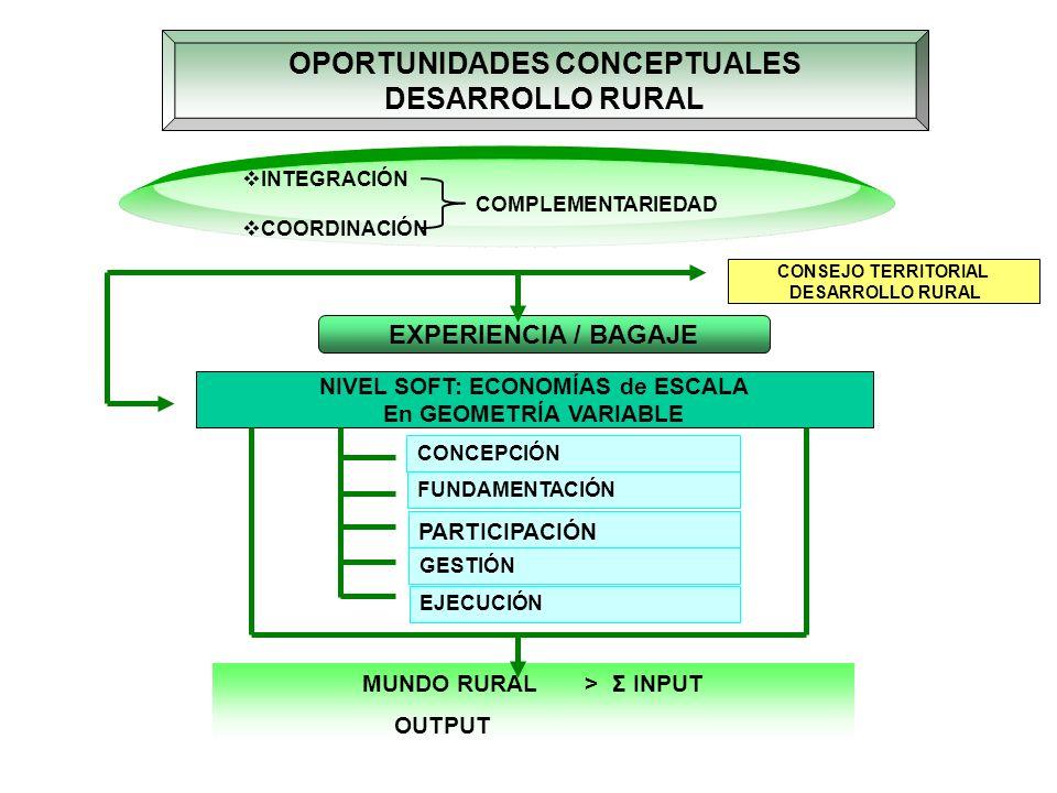 OPORTUNIDADES CONCEPTUALES NIVEL SOFT: ECONOMÍAS de ESCALA