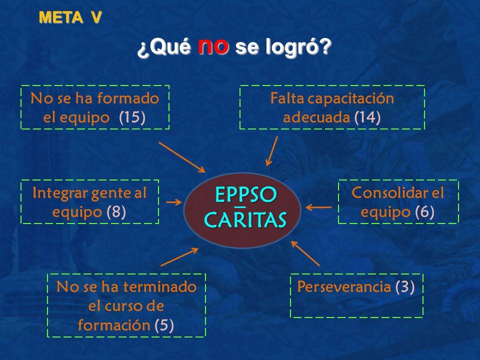 ¿Qué no se logró EPPSO CARITAS META V No se ha formado el equipo (15)