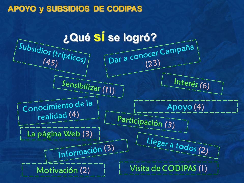 ¿Qué sí se logró APOYO y SUBSIDIOS DE CODIPAS