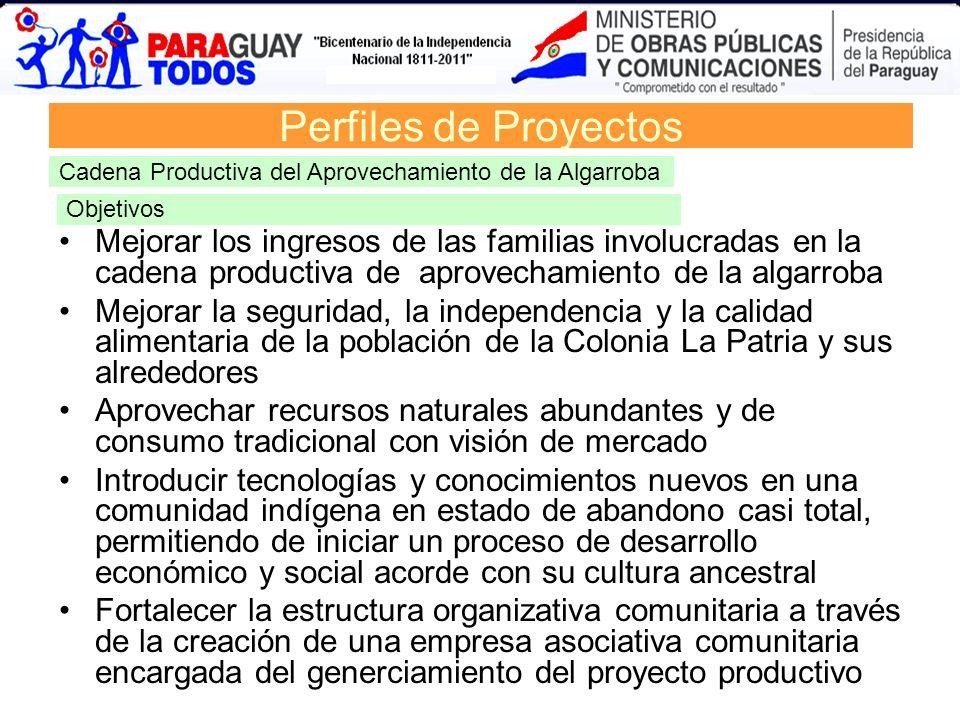 Perfiles de Proyectos Cadena Productiva del Aprovechamiento de la Algarroba. Objetivos.