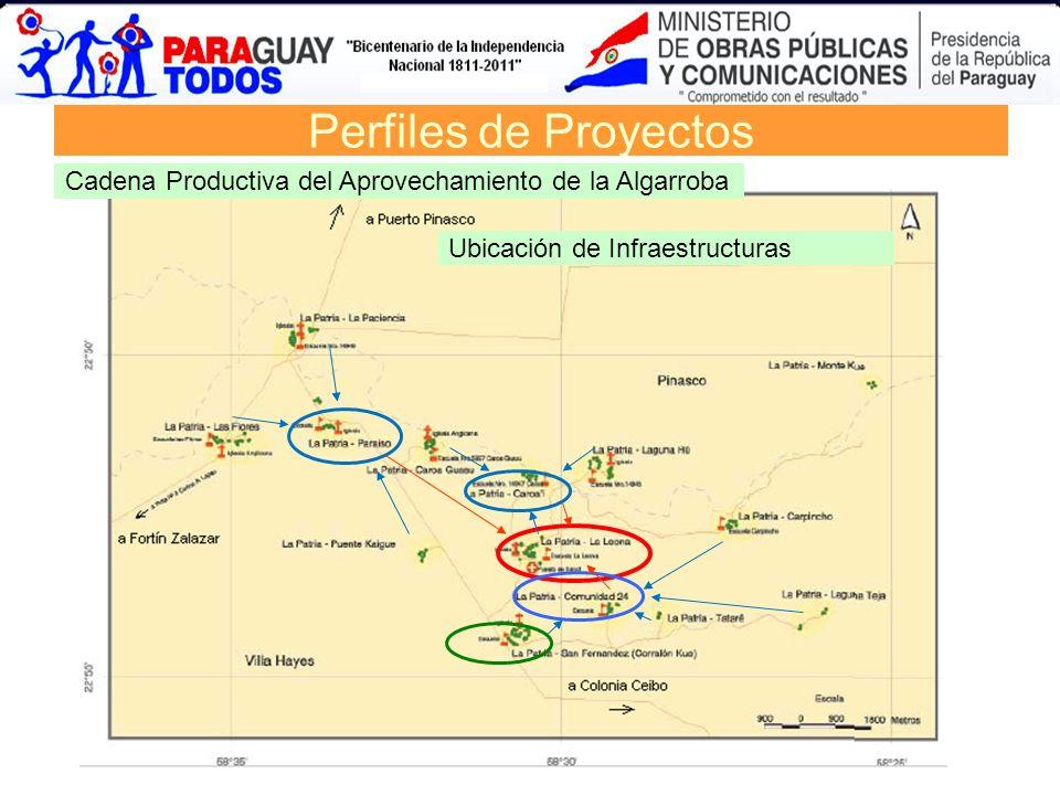 Perfiles de Proyectos Cadena Productiva del Aprovechamiento de la Algarroba.