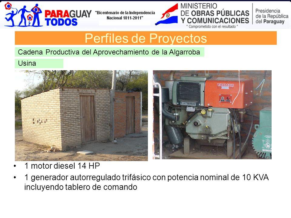 Perfiles de Proyectos 1 motor diesel 14 HP