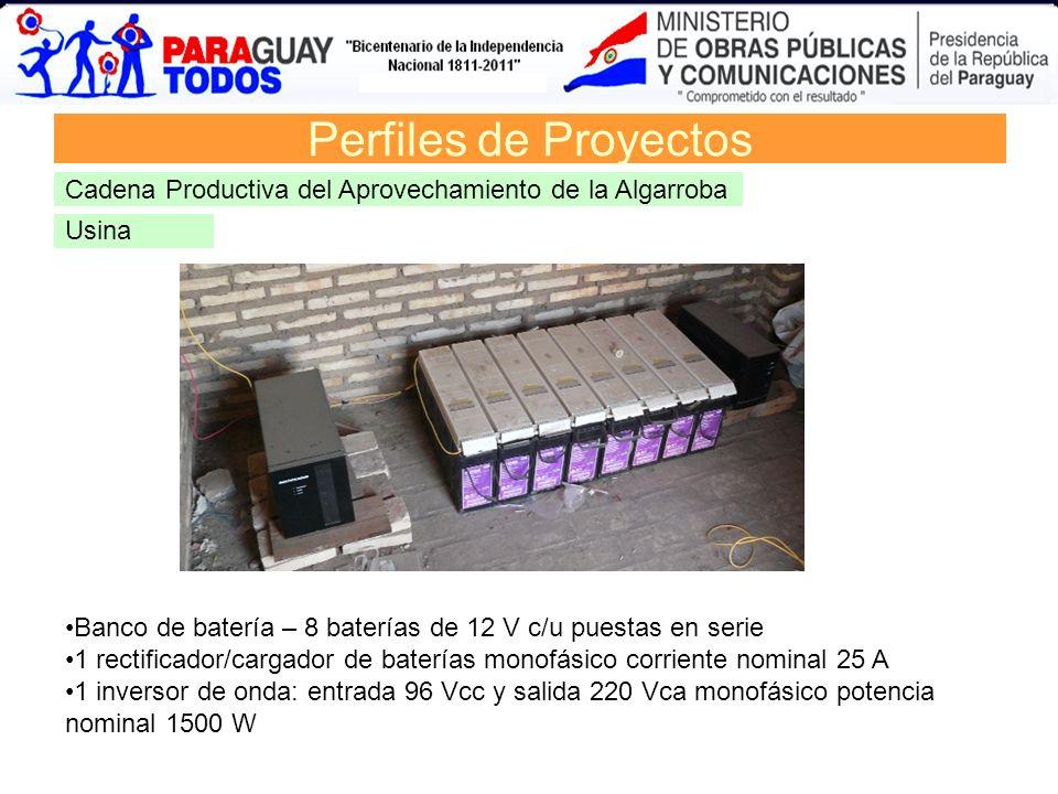 Perfiles de Proyectos Cadena Productiva del Aprovechamiento de la Algarroba. Usina. Banco de batería – 8 baterías de 12 V c/u puestas en serie.