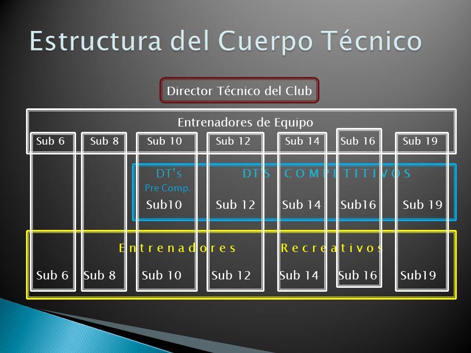 Estructura del Cuerpo Técnico
