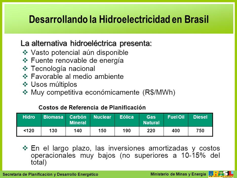 Desarrollando la Hidroelectricidad en Brasil