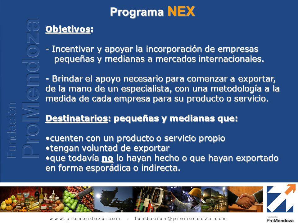 Programa NEX Objetivos: