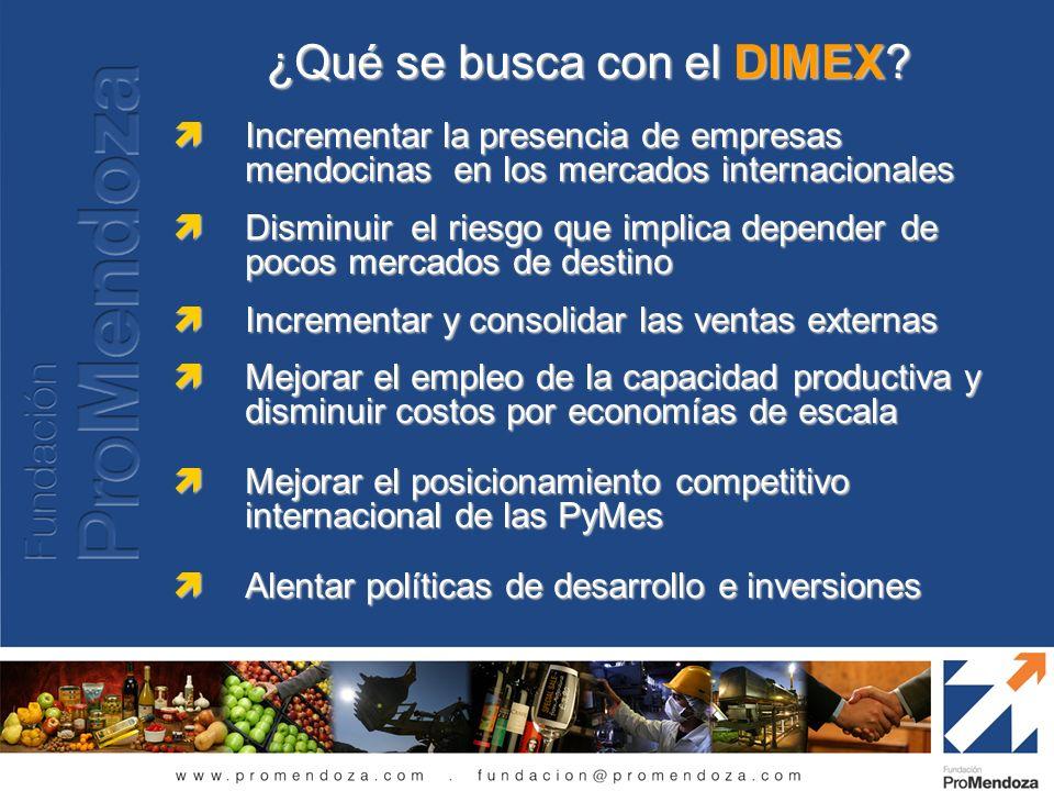 ¿Qué se busca con el DIMEX