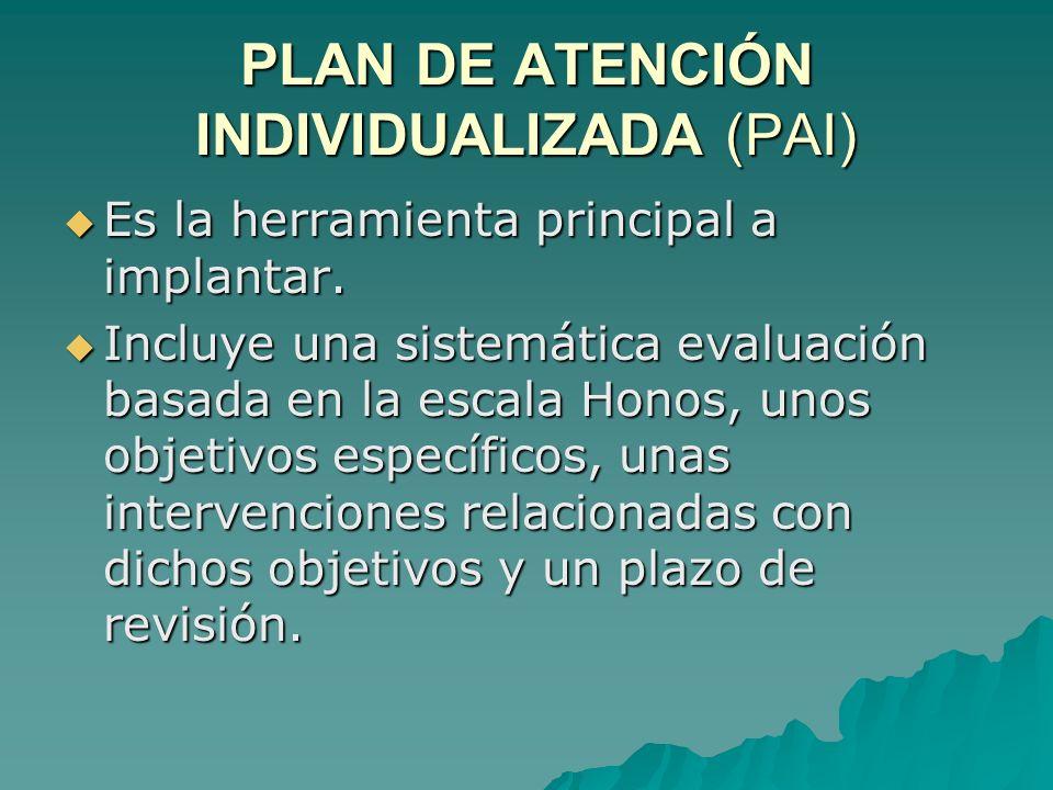 PLAN DE ATENCIÓN INDIVIDUALIZADA (PAI)