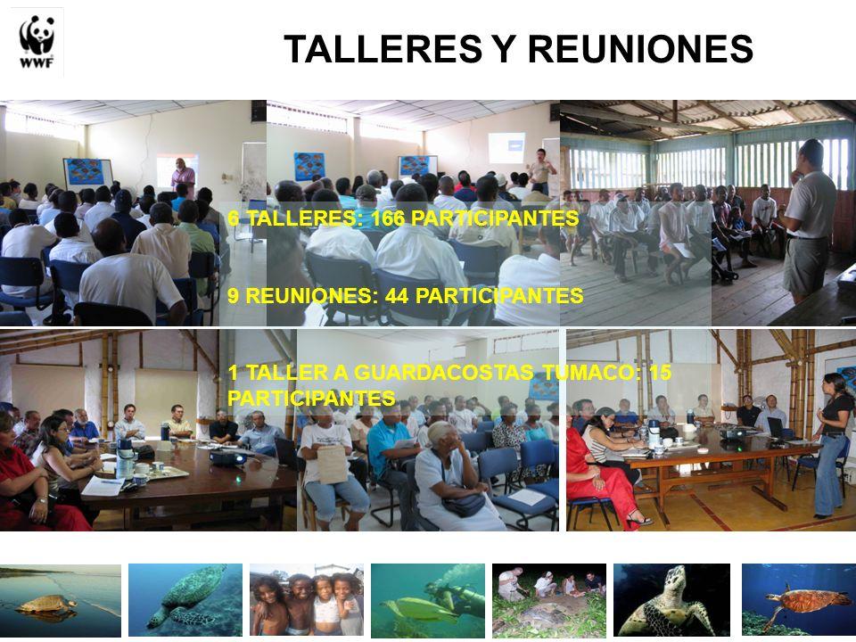 TALLERES Y REUNIONES 6 TALLERES: 166 PARTICIPANTES