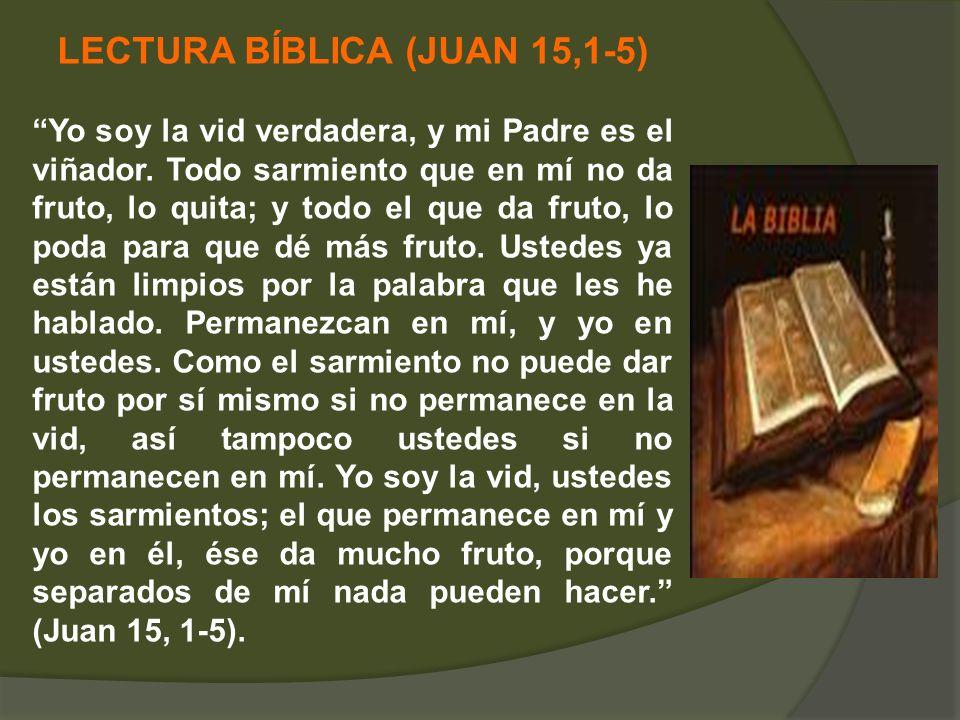 LECTURA BÍBLICA (JUAN 15,1-5)