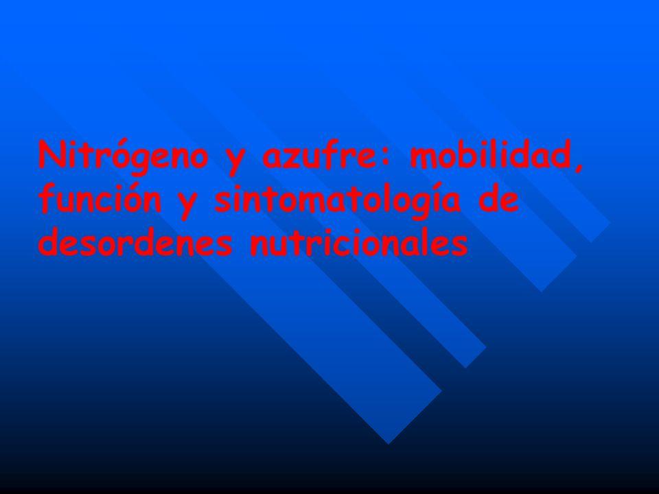 Nitrógeno y azufre: mobilidad, función y sintomatología de desordenes nutricionales