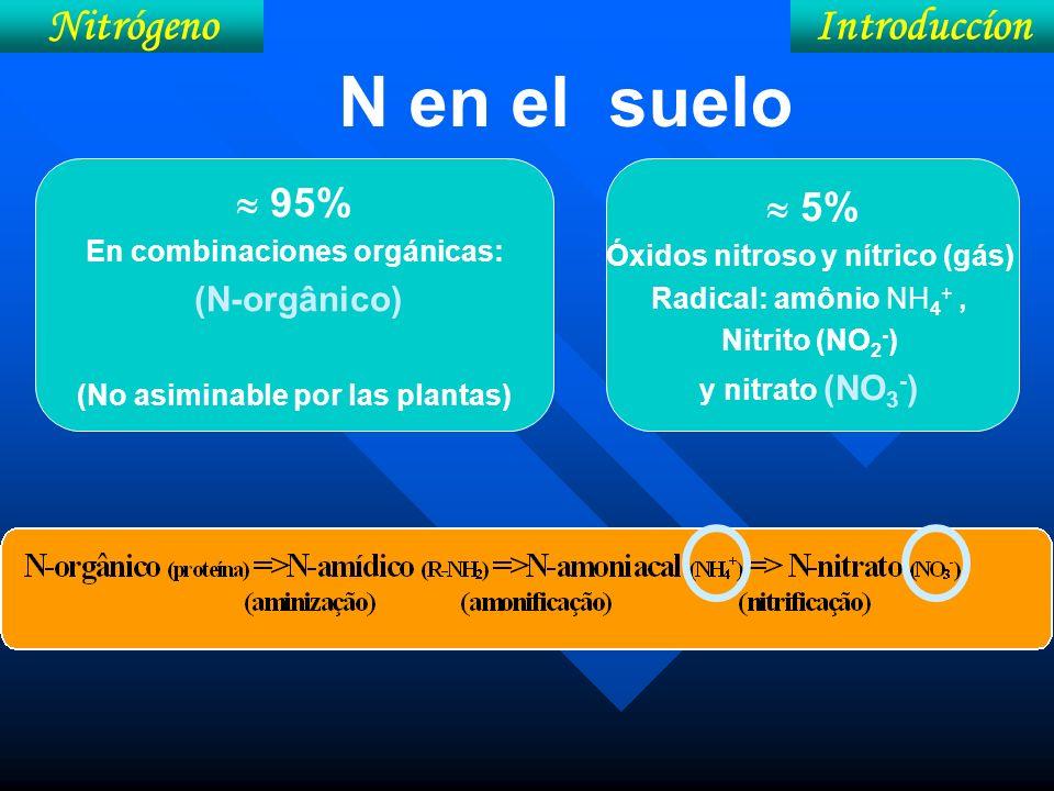 N en el suelo Nitrógeno Introduccíon  95%  5%