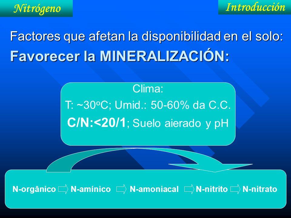 N-orgânico N-amínico N-amoniacal N-nitrito N-nitrato