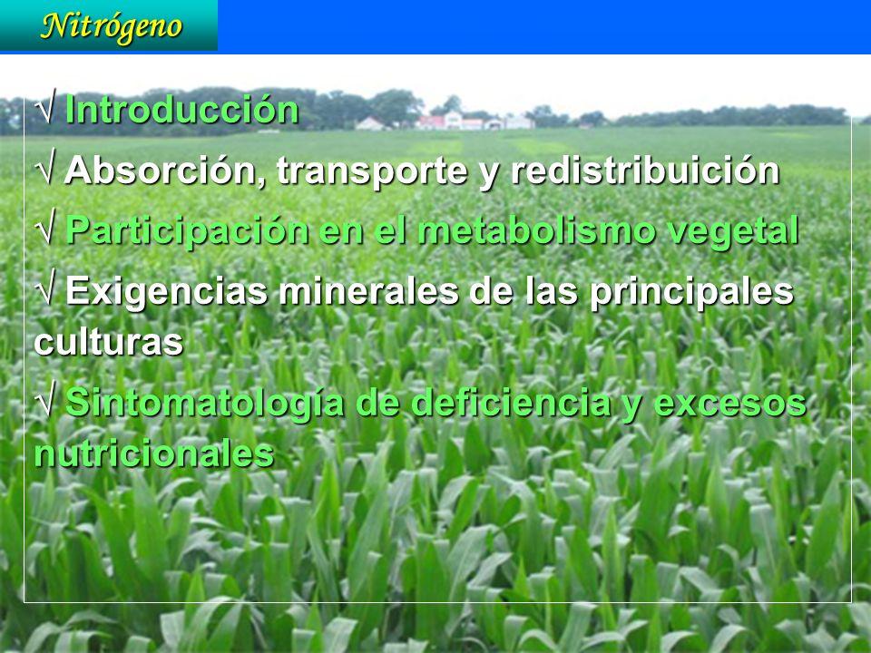Nitrógeno  Introducción.  Absorción, transporte y redistribuición.  Participación en el metabolismo vegetal.