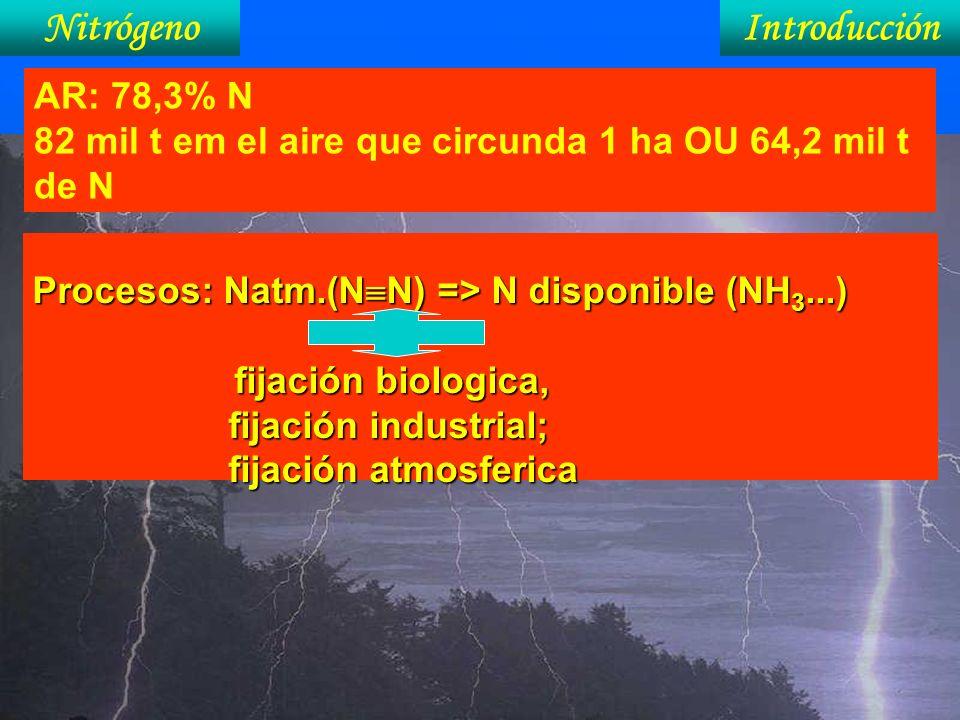 Nitrógeno Introducción