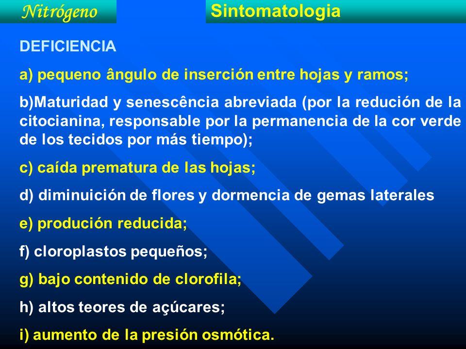 Nitrógeno Sintomatologia