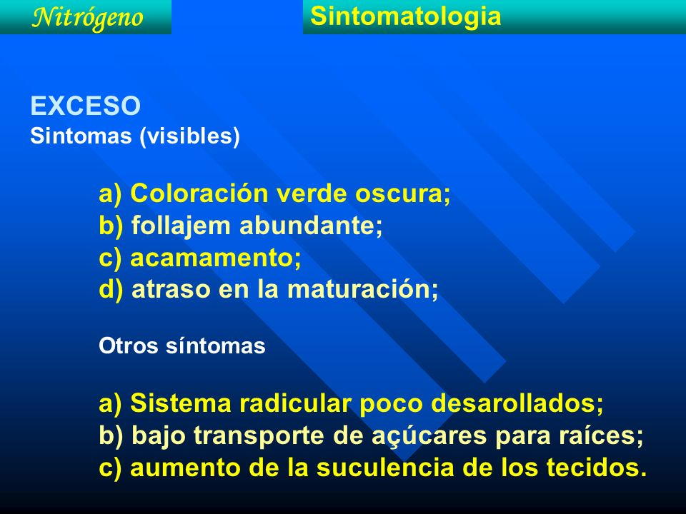 Nitrógeno Sintomatologia EXCESO b) follajem abundante; c) acamamento;