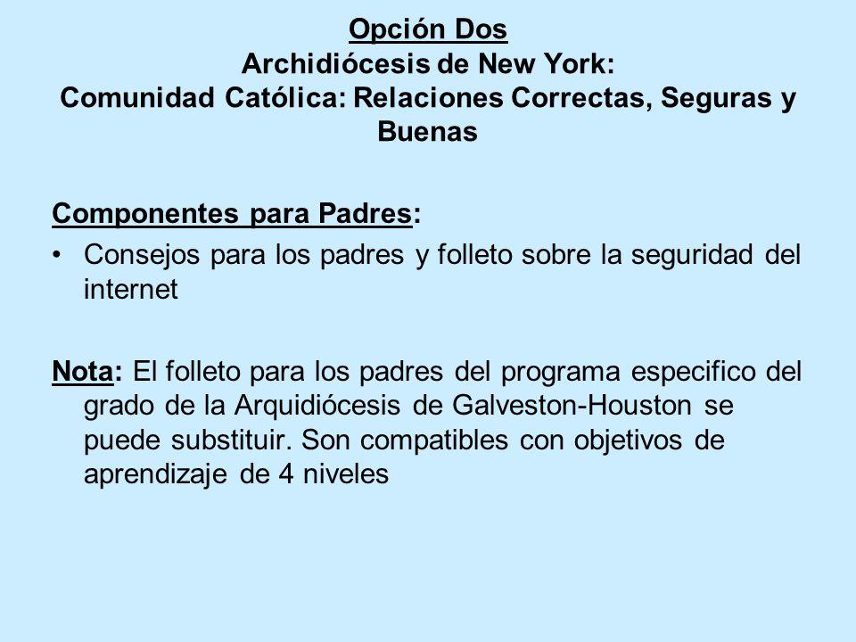Opción Dos Archidiócesis de New York: Comunidad Católica: Relaciones Correctas, Seguras y Buenas