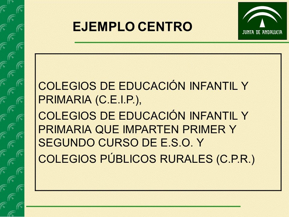 EJEMPLO CENTRO COLEGIOS DE EDUCACIÓN INFANTIL Y PRIMARIA (C.E.I.P.),