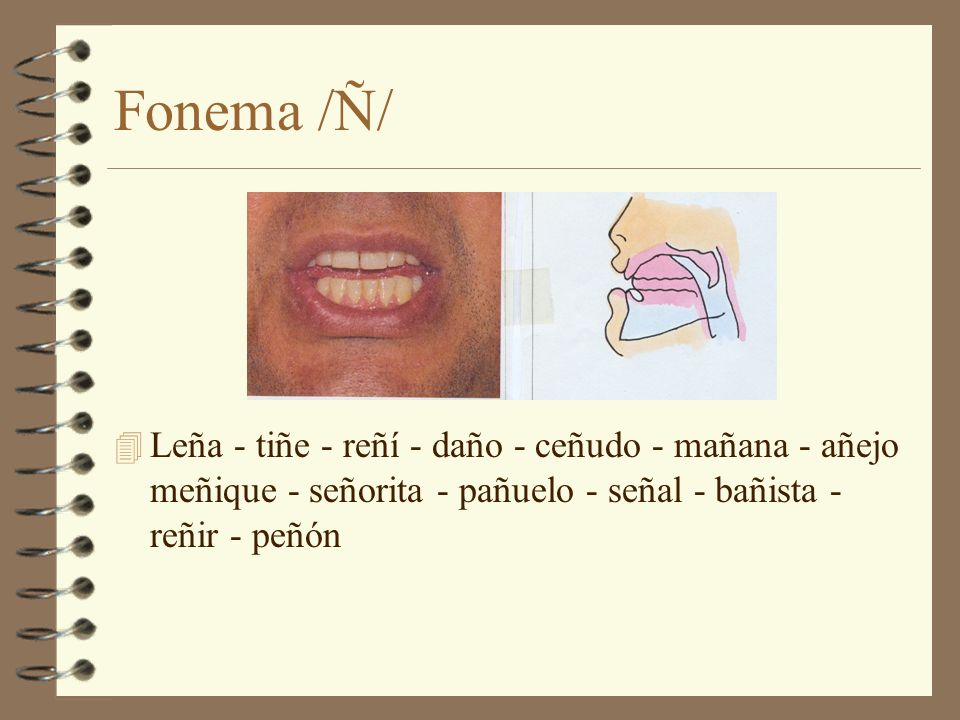 Fonema /Ñ/ Leña - tiñe - reñí - daño - ceñudo - mañana - añejo meñique - señorita - pañuelo - señal - bañista - reñir - peñón.