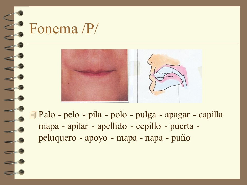 Fonema /P/ Palo - pelo - pila - polo - pulga - apagar - capilla mapa - apilar - apellido - cepillo - puerta - peluquero - apoyo - mapa - napa - puño.