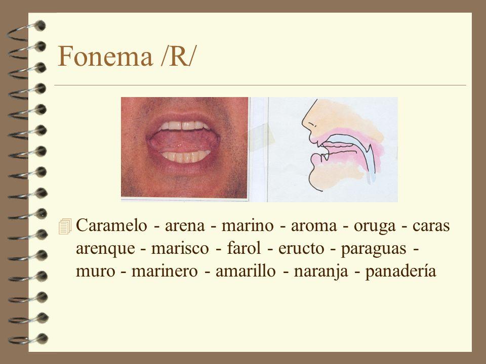 Fonema /R/