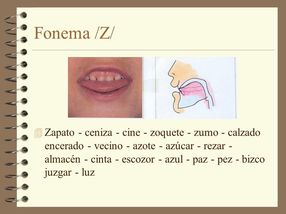 Fonema /Z/
