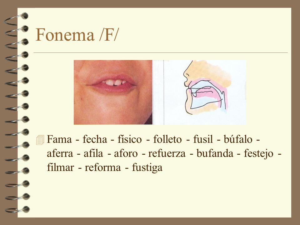 Fonema /F/ Fama - fecha - físico - folleto - fusil - búfalo - aferra - afila - aforo - refuerza - bufanda - festejo - filmar - reforma - fustiga.