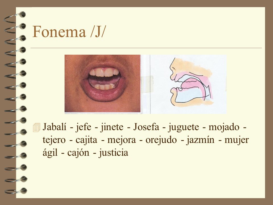 Fonema /J/ Jabalí - jefe - jinete - Josefa - juguete - mojado - tejero - cajita - mejora - orejudo - jazmín - mujer ágil - cajón - justicia.