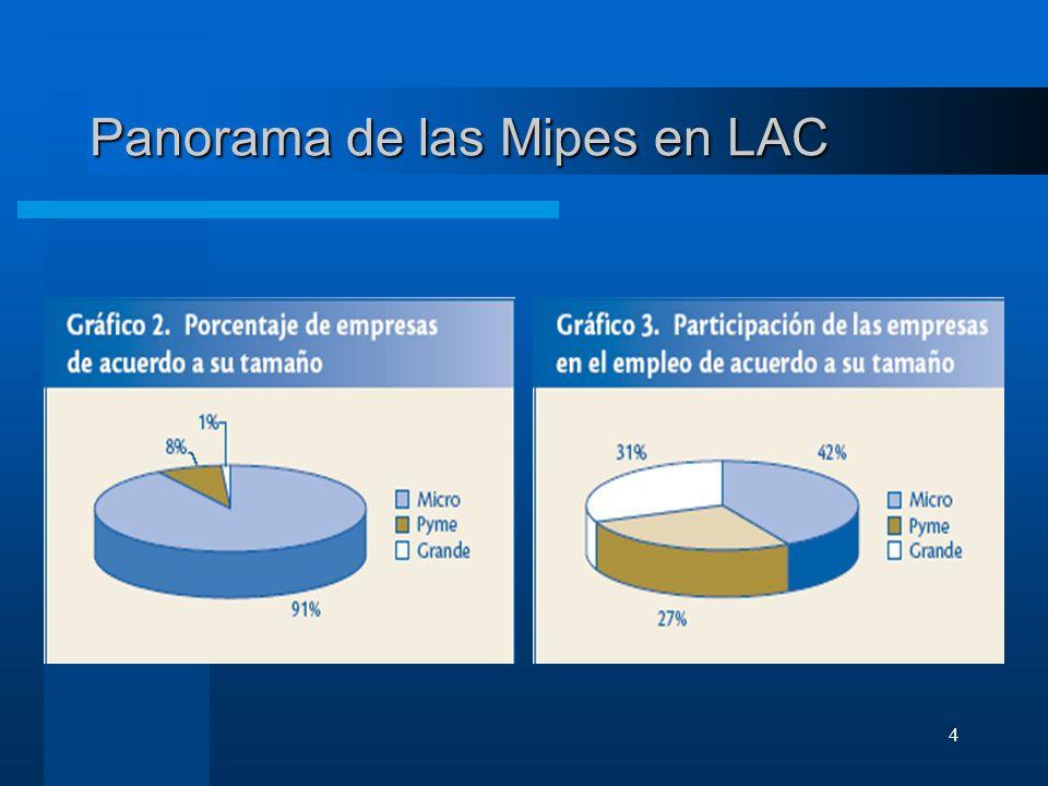Panorama de las Mipes en LAC