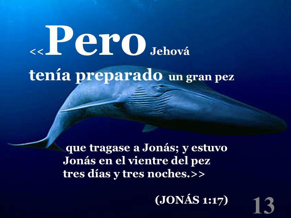 13 tenía preparado un gran pez <<Pero Jehová