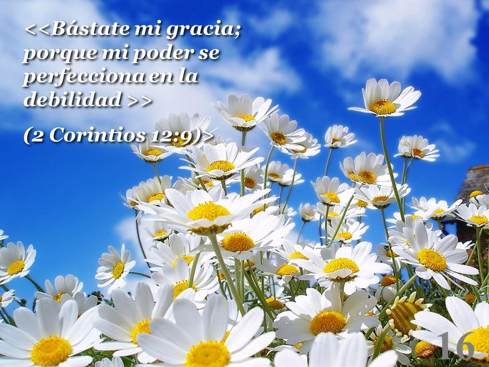 <<Bástate mi gracia; porque mi poder se perfecciona en la debilidad >>