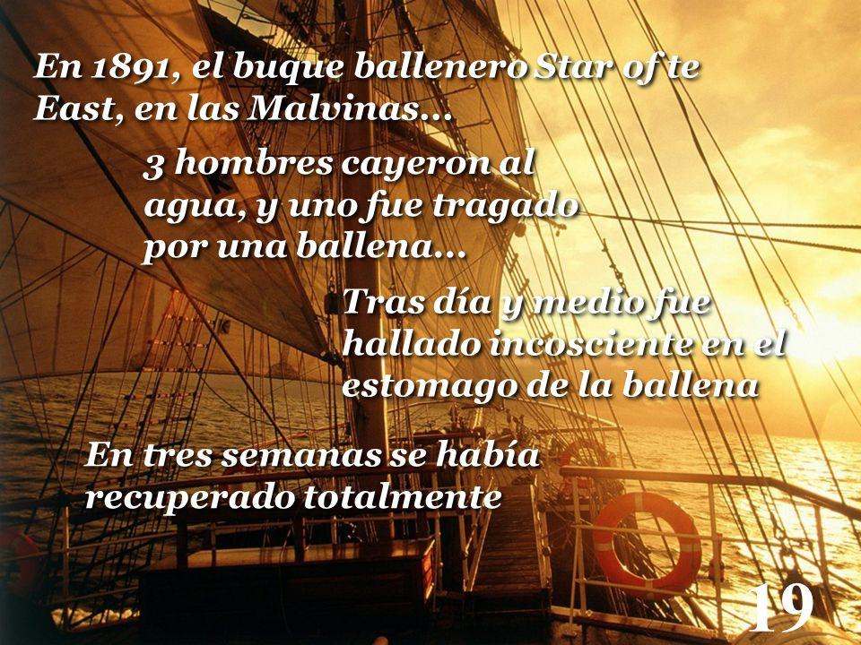 19 En 1891, el buque ballenero Star of te East, en las Malvinas...