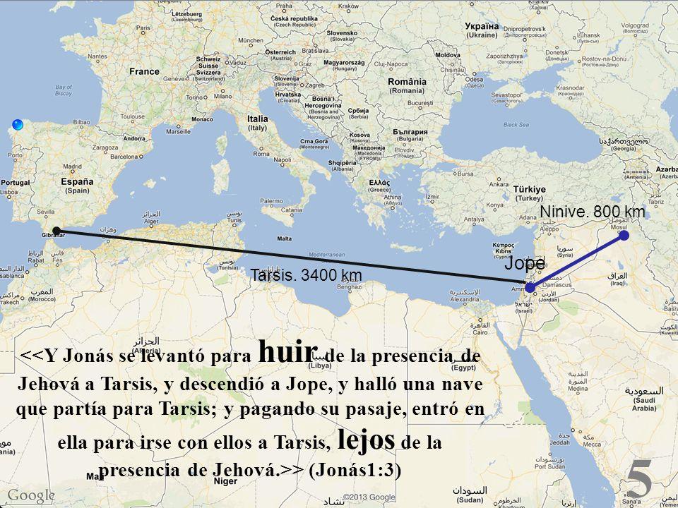 Ninive. 800 kmJope. Tarsis. 3400 km.